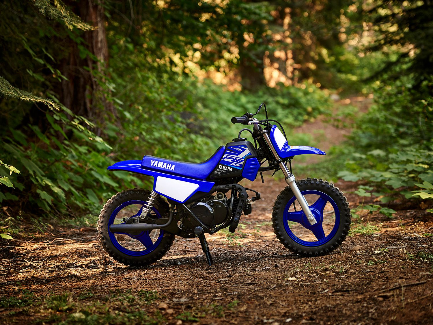 2020 Dirt Bikes, Dual Sports, And Trailbikes Under $5,000